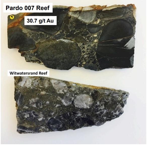 Pardo-3